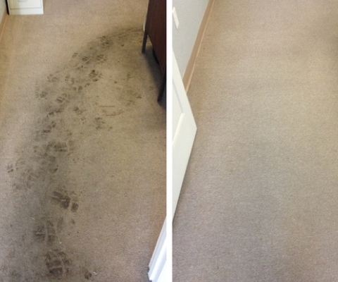 Carpet cleaning Rotherham